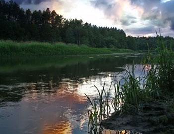 2010 09 30 охота и рыбалка в беларуси